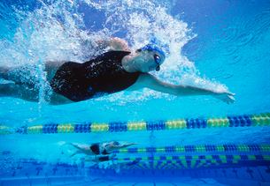 Professional female swimmers swimming in poolの写真素材 [FYI03647291]