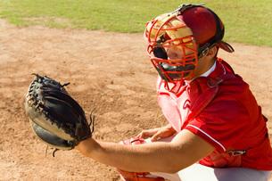 Baseball catcher crouching on baseball fieldの写真素材 [FYI03647349]