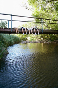 Four teenagers (16-17 years) lying on wooden bridge above riの写真素材 [FYI03647769]