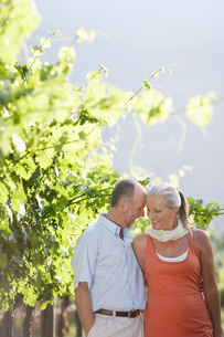 Portrait of mature couple at the vineyardの写真素材 [FYI03647925]