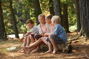 Four Children in Forestの写真素材 [FYI03648057]