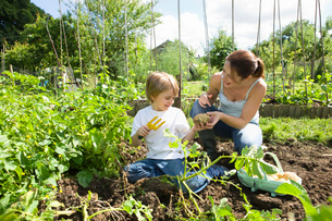Mother gardening with sonの写真素材 [FYI03648603]