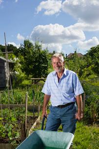 Senior man with wheel barrow gardening portraitの写真素材 [FYI03648605]