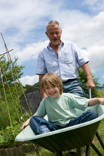 Grandfather pushing boy in wheel barrowの写真素材 [FYI03648618]
