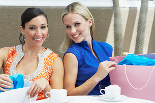 Women on a Shopping Tripの写真素材 [FYI03648668]