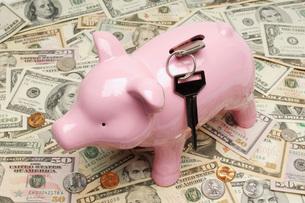 Piggy Bank on Moneyの写真素材 [FYI03648761]