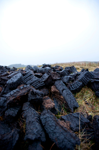 Close-up view of peat cuttingsの写真素材 [FYI03648991]