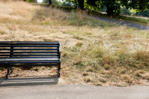 Empty park bench at parkの写真素材 [FYI03649330]
