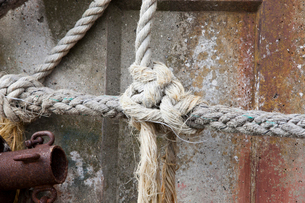 Tied knot rope, close upの写真素材 [FYI03649348]