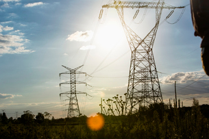 Electric power lines during summerの写真素材 [FYI03649600]