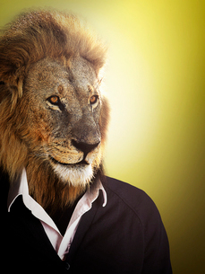 Lion dressed up with a shirt and jumperの写真素材 [FYI03649835]