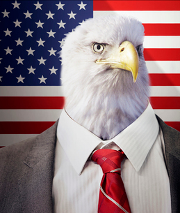 Head of an eagle on a businessman's body in front of American Stars and Stripes flagの写真素材 [FYI03649858]