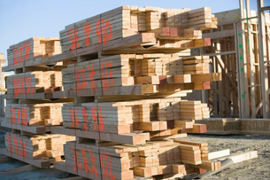 Building construction and Stacks of Planksの写真素材 [FYI03650014]