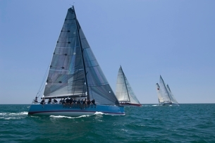 Yachts compete in team sailing event Californiaの写真素材 [FYI03650573]