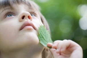 Girl holds leaf to her chin looking upの写真素材 [FYI03650778]