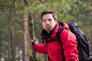 Young male backpacker in forestの写真素材 [FYI03651465]