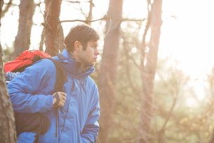 Make hiker carrying backpack in forestの写真素材 [FYI03651479]