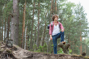 Full length of male backpacker standing in forestの写真素材 [FYI03651650]