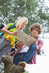 Low angle view of hiking couple reading map together in forestの写真素材 [FYI03651654]