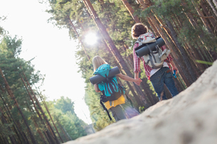 Rear view of hiking couple holding hands while walking in forestの写真素材 [FYI03651662]