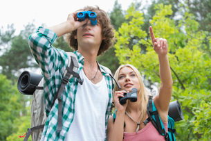 Male hiker using binoculars while girlfriend showing something in forestの写真素材 [FYI03651678]