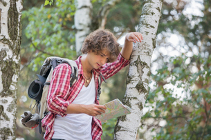 Backpacker reading map while leaning on tree trunk in forestの写真素材 [FYI03651684]