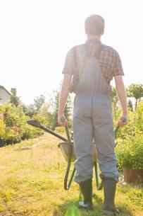 Full-length rear view of gardener pushing wheelbarrow at gardenの写真素材 [FYI03653209]