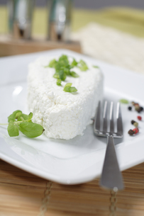 White Polish cheeseの写真素材 [FYI03653612]