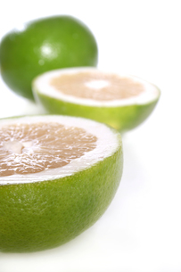 Green grapefruits on white backgroundの写真素材 [FYI03653838]
