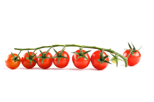 Cherry tomatoes on white backgroundの写真素材 [FYI03653867]
