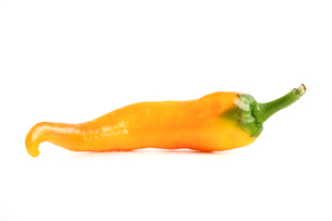 Chilli peppers on white backgroundの写真素材 [FYI03653876]