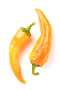 Studio shot of chilli peppersの写真素材 [FYI03653878]