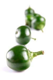 Close-up of green chilli pepperの写真素材 [FYI03653879]