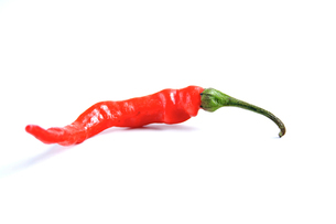 Red chilli pepper on white backgroundの写真素材 [FYI03653886]