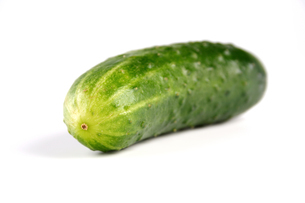 Studio shot of cucumber on white backgroundの写真素材 [FYI03653890]