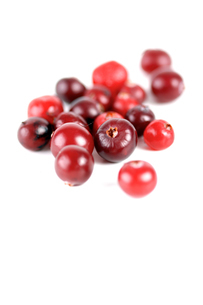 Cranberries on white background - studio shotの写真素材 [FYI03653987]