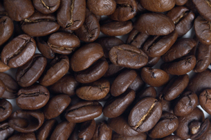 Coffee grains - close upの写真素材 [FYI03654012]