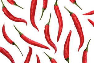 Red chili peppers on white backgroundの写真素材 [FYI03654157]