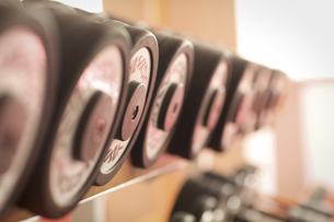 Row Of Dumbbells At Gymの写真素材 [FYI03654838]