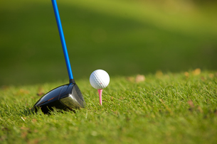 A golf club on a golf courseの写真素材 [FYI03654944]