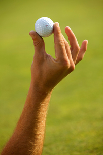Close-up of human hand holding golf ballの写真素材 [FYI03654957]