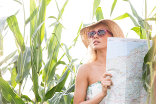 Woman holding map while standing amidst plants outdoorsの写真素材 [FYI03656429]