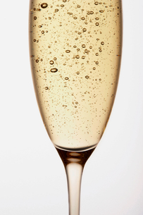 Glass of Champagne close up in studioの写真素材 [FYI03657881]