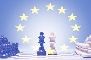 European Chess gameの写真素材 [FYI03657906]