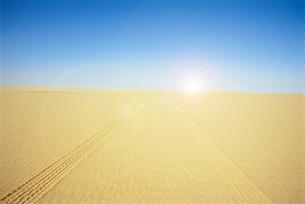 ARID DESERT WITH TRACK MARKSの写真素材 [FYI03657943]