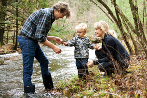 Parents with son (2-3 ) by creek finding crawfishの写真素材 [FYI03662707]