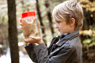 Side view of boy ( 8-9 ) holding jar with crawfishの写真素材 [FYI03662712]
