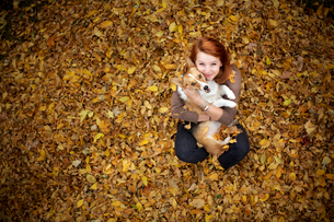 Young woman posing with her dog in pile of leavesの写真素材 [FYI03665282]