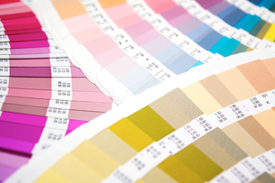 扇状に広げた沢山のカラーチャート。彩り、カラフル、デザイン、コーディネイト、イメージの写真素材 [FYI03667119]