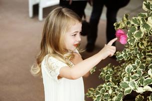 Girl touching flower headの写真素材 [FYI03667626]